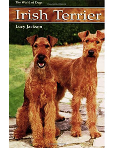 the irish terrier by lucy jackson